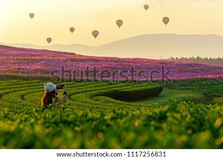 Lifestyle traveler women take a photo fire balloon on the nature tea and cosmos farm in the sunrise morning, happy feeling good relax and freedom.  Travel Concept