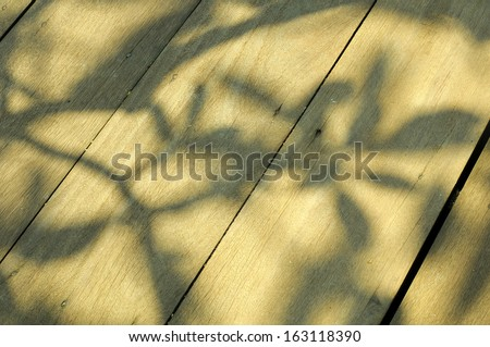 light and shadow from tree on wooden floor texture background