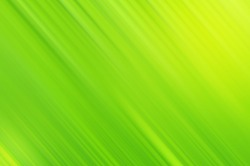 Light background line of green leaf abstract wallpaper pattern