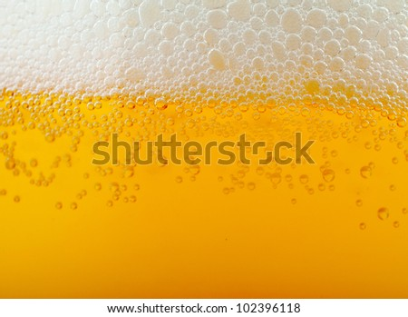 Light beer background - stock photo