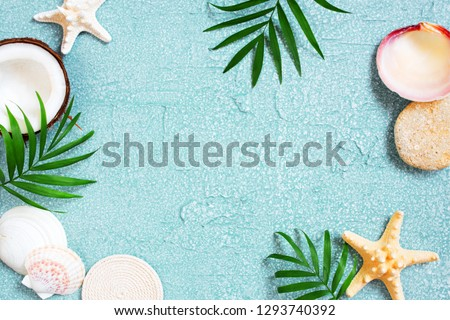 Light blue background with shells, coconut and palm leaves, summer background #1293740392