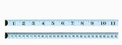 Light blue rulers, the first in inches, the second in centimeter