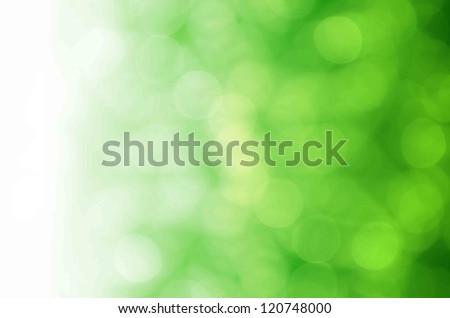 light bokeh on green background