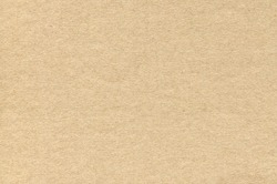 Light Brown Cardboard Texture. Paper Background for Design