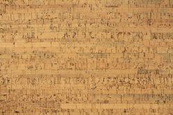 Light brown cork-wood panel - background