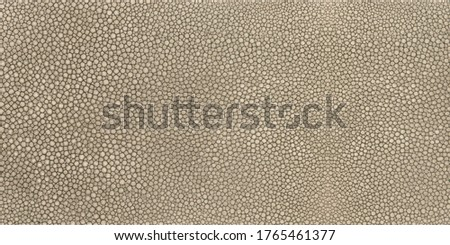 Light brown shagreen stingray skin texture seamless Stock fotó ©