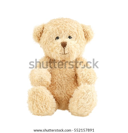 Light brown teddy bear isolated on white background. #552157891
