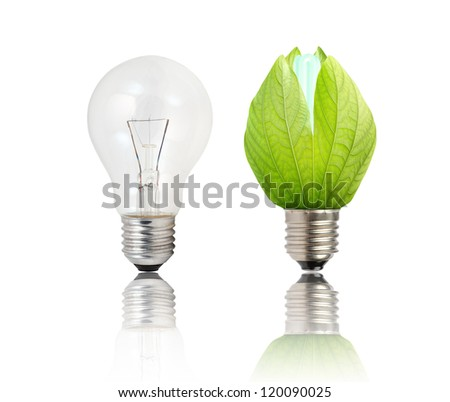 Light bulb and green Light bulb on white background