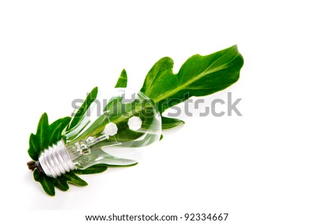 Light bulb and leaf on white backgroud