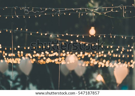 Photo of  Light bulb decor in outdoor party