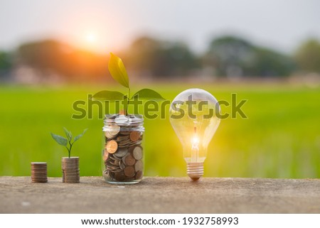 Light bulb Energy saving and a coin glass on the floor nature background Photo stock ©