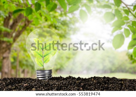Light bulb glowing in soil , idea or energy and environment concept #553819474