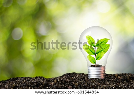 Light bulb glowing in soil / idea or energy and environment concept