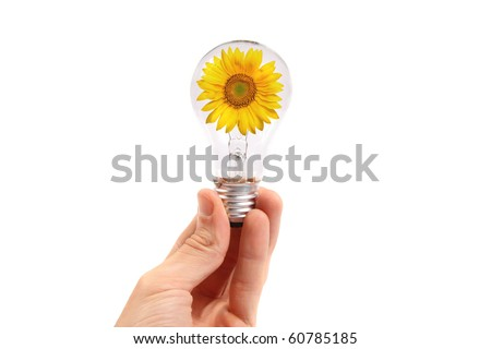 light bulb in the hand with sunflower inside