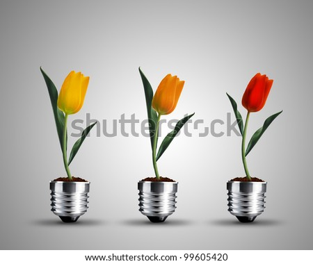 light bulb made from tulips , light bulb conceptual Image.