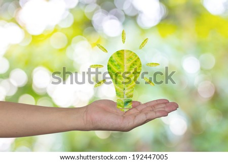 Light bulb made of green leaf on woman hands  Green eco energy concept.