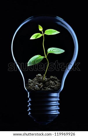 Light bulb on black background with copy text - stock photo