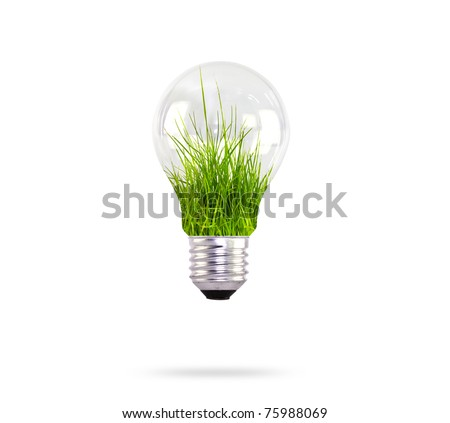 light bulb with grass inside