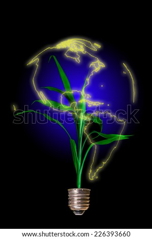 Light bulb with plant growing in the form of the globe. Concept of Eco technology
