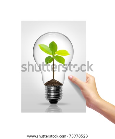 Light bulb with sprout inside picture white paper in girl hand on white background