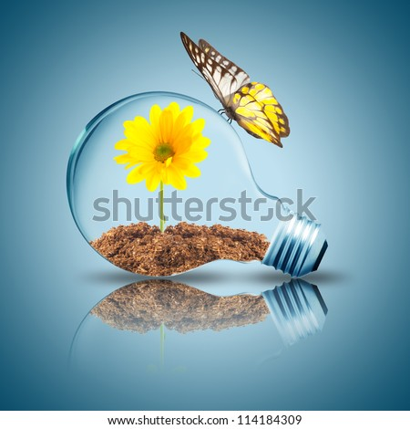 Light bulb with yellow flower inside and butterfly