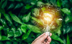 Light bulbs that grow in the concept of energy in nature