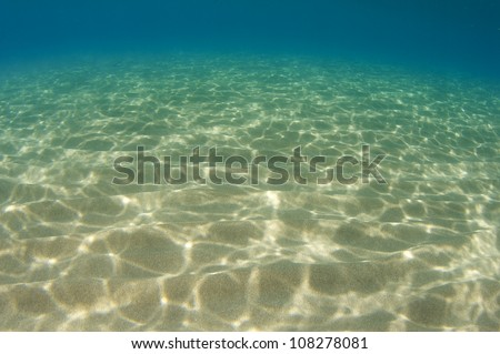 Light Dappled Sandy Bottom at a shallow water beach.