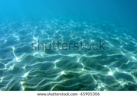 Light dappled sandy bottom, picture taken in Deerfield Beach, Florida.