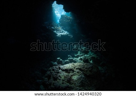 Light descends into the darkness of a submerged cavern in the Solomon Islands. Caves and caverns riddle coral reefs since limestone can be easily eroded.