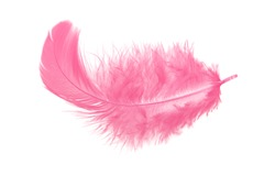 Light fluffy pink feather isolated on white background.