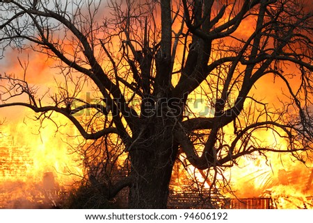 Light from a blazing house fire seen through the limbs of this decades old oak makes for a dramatic image, but more importantly stands as a warning to all to take the threat of fire seriously.