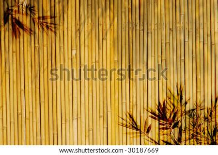 Light Golden bamboo Background