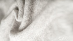 Light grey luxury pure cashmere texture. Blurred background with copy space