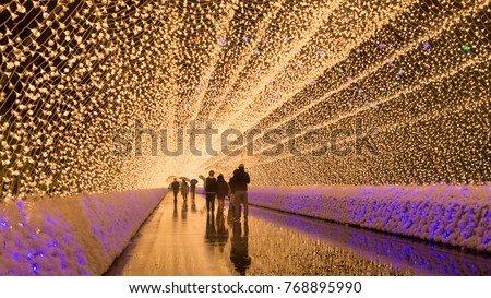 Light Illumination Tunnel, Mie Prefecture, Kuwana, Japan
