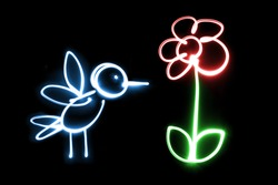 Light painting Bird / Flower