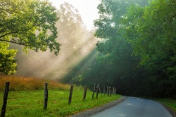 Light rays on a road in the morning in Cades Cove in thee Great Smoky Mountains National Park