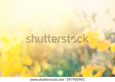 Light Summer Blossoming Natural Bush Flower Bokeh Background Yellow Color