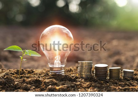 lightbulb with small tree and money stack on soil in nature sunset background. concept saving energy  #1207390324