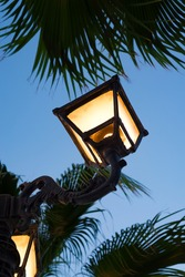Lighted street lamp with palm trees at night.