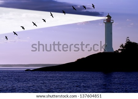 lighthouse and migration gooses at the sunrise