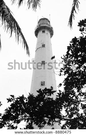 lighthouse vertical format