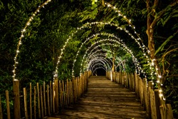 Lighting line hang on to the tree decor on to cave concept on the wood terrace walking way with darken around.