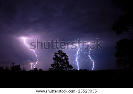 Lightning Strikes blue and purple colored forked lightning strikes contacting the ground at night during a summer electrical thunderstorm in South Africa with silhouetted trees in the foreground.