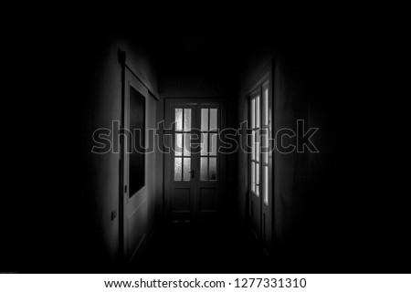 LIGHTS THROUGHT DOORS #1277331310