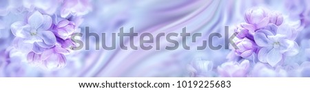 Lilac flowers bloom branch panorama. Greeting gift card background . Toned image. Template banner #1019225683