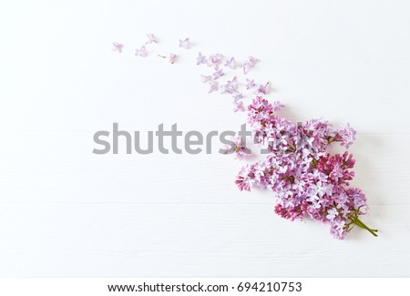 lilac flowers on a white wooden ...