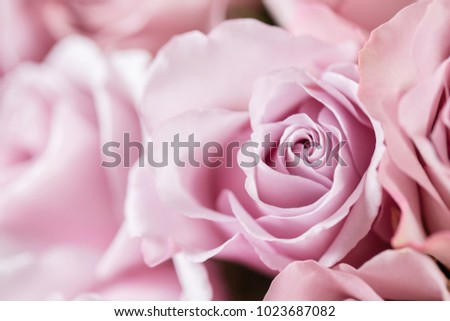 Lilac garden rose. Bouquet flowers of roses in glass vase. Shabby chic home decor. Morning dew - variety. Wallpaper