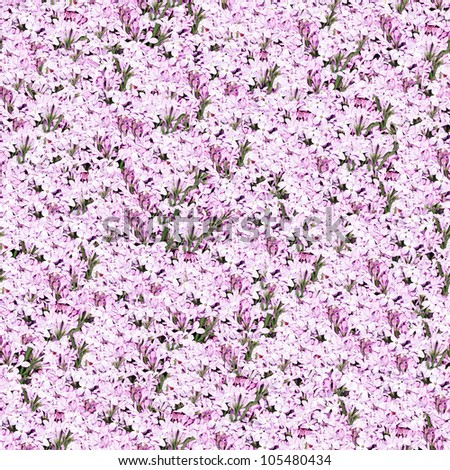 lilac seamless background