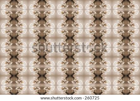 lilies wallpaper