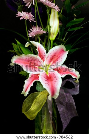 Lilly composition